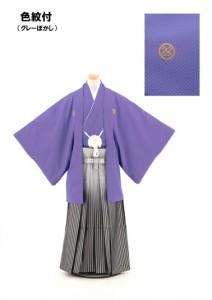 1141 紫刺子